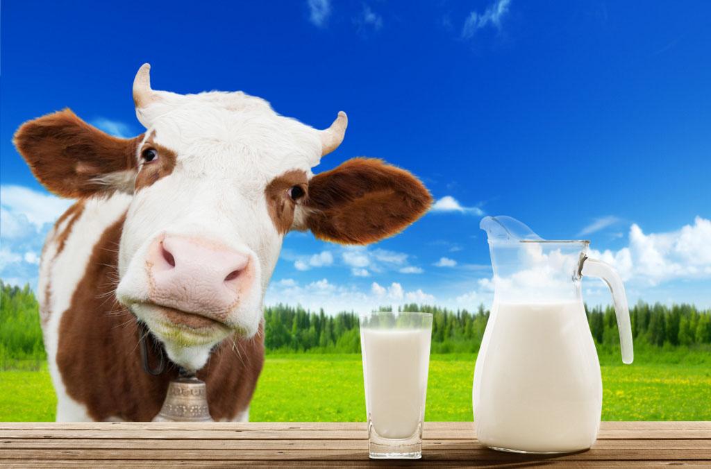 evitar-leite-de-vaca